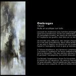 Ombrages Huile sur toile 180x60 - 2014  Disponible